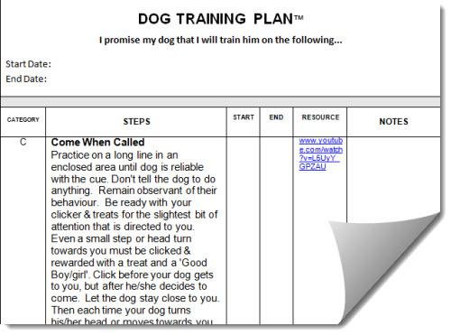 how to write a dog training plan 3 easy steps